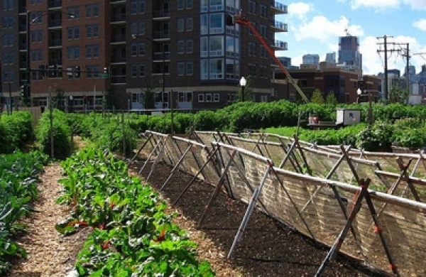 State of Illionis HB3418 - The Creation of Urban Agriculture Incentive Zones